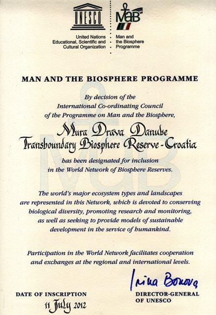 diploma TBR MDD