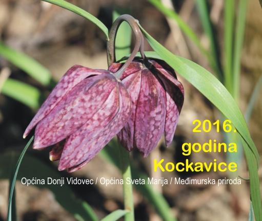 Godina Kockavice 2016