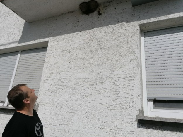 Robert Patafta zastita fasade i gnijezda (5)_resize
