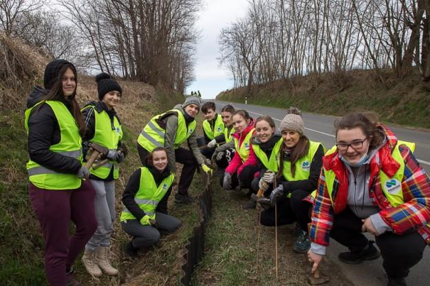 volonterska akcija spasavanja vodozemaca (2)