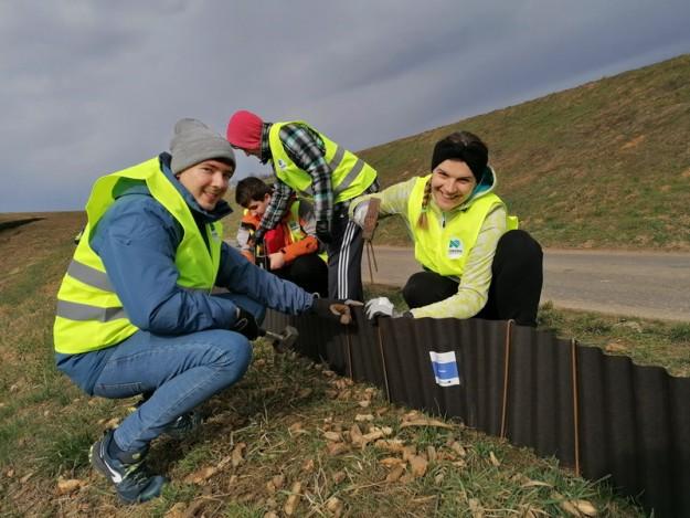 volonterska akcija spasavanja vodozemaca (6)