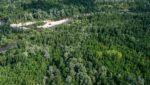 Prikaz poplavne šume uz rijeku Dravu.
